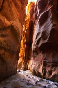 Zion National Park Narrows Hike permits