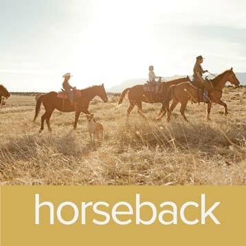 horseback rides in zion
